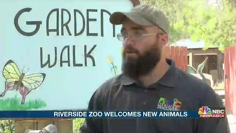 Riverside Discovery Center receives three new animals