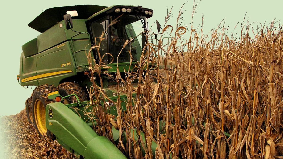 USDA expands aid to agricultural producers impacted by the pandemic.