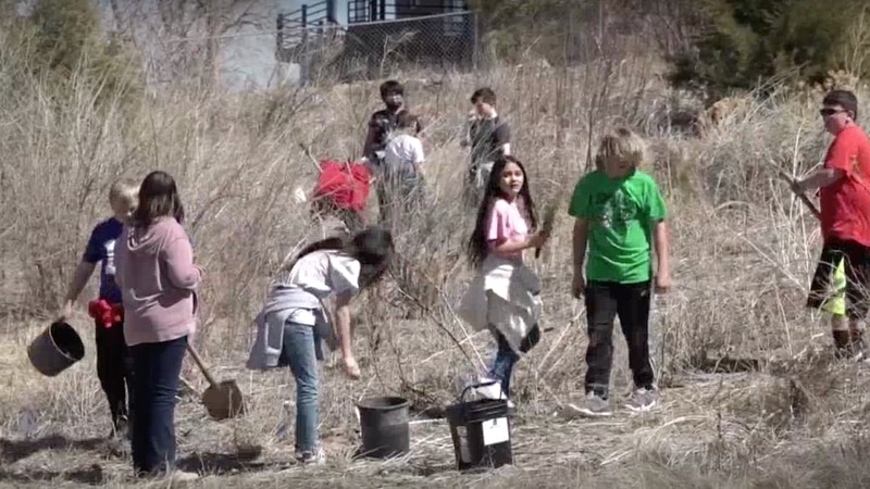 Northfield students plant trees.